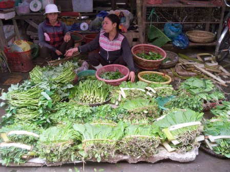 Herb stall
