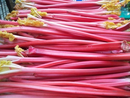 Rhubarb from Wakey